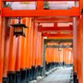 初詣ツアー 初詣といえば、大人気の「おいなりさん」へ!新春・稲荷詣