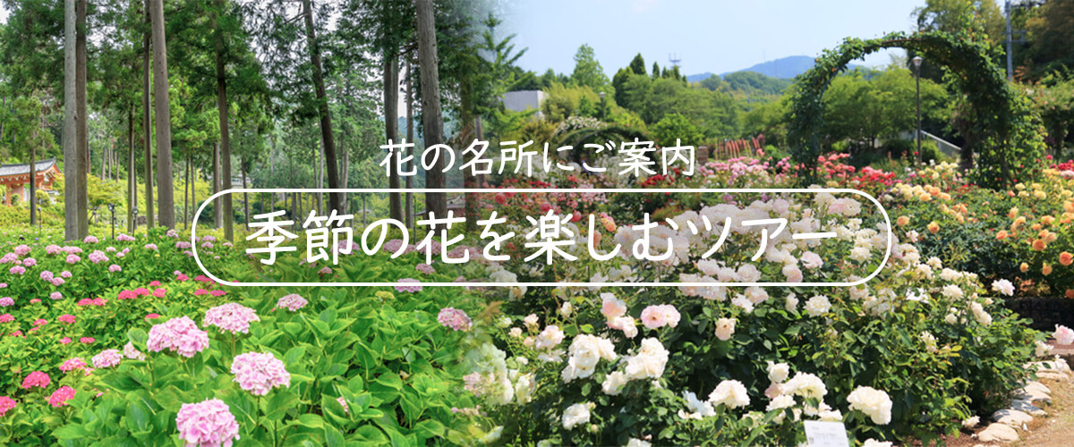 季節の花を楽しむツアー