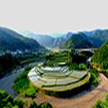 【14名限定】山・川・海を巡り有田の魅惑のスポットへ行く!生石高原・あらぎ島・蔵王橋・みかん海道 フォトジェニックな旅
