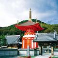 初詣ツアー 幸せを呼ぶ風光の淡路島で幸せを授かる!~新春・七福神詣~