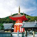 〈初詣バスツアー〉福を授かる 新春 淡路島七福神巡り