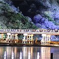 嵐山花灯路と屋根なしスカイバスで巡る京都イルミネーション紀行