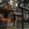 世界遺産・熊野古道「中辺路」 滝尻王子~御山ウォーク