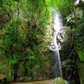 世界農業遺産の地 山岳修行の高尾山ウォーク