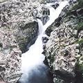 伊勢海老と鮑の豪華会席料理の昼食と秘境の珍しい滝「滝の拝」&橋杭岩観賞と串本の絶品干物のお買い物
